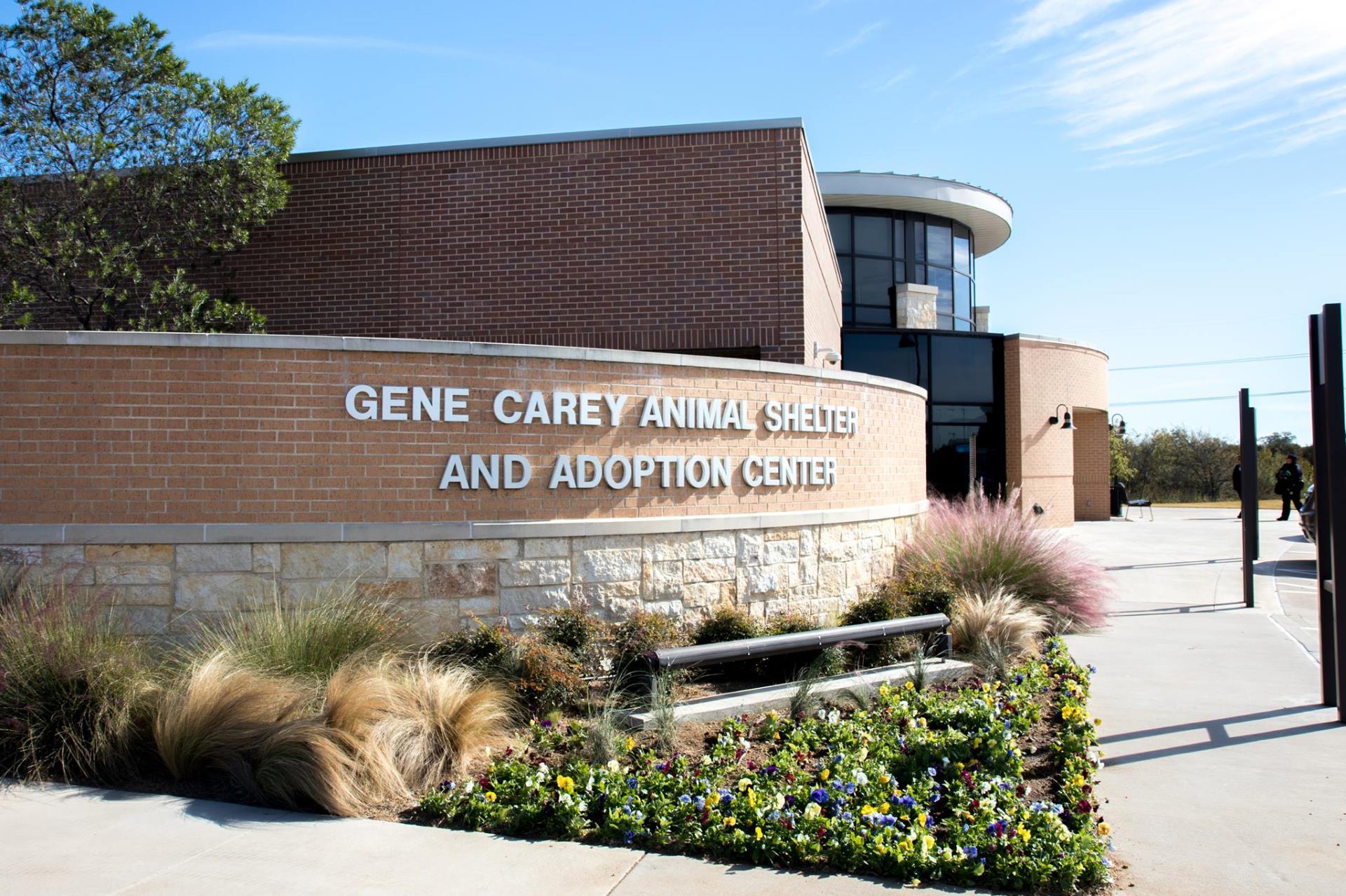 Animal Adoption Center | City of Lewisville, TX